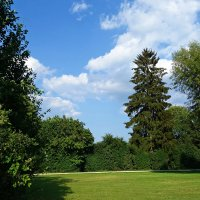 Зелёное лето...... :: Galina Dzubina
