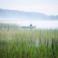 туман над озером :: Тася Тыжфотографиня