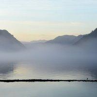Утро туманное :: Nina Streapan
