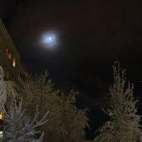 Ночь такая лунная была... :: Ольга