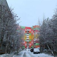 Первый снег :: Ольга