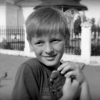 Спас голубя от собаки :: Александр Бойченко