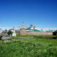 Вид на западную стену крепости из-за сухого дока, с ул.Приморской :: Елена Павлова (Смолова)
