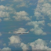 Воздушный перекрёсток. :: Alexey YakovLev