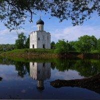 В мае у Покрова! :: Владимир Шошин