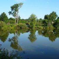 Гляжу в озера синие... :: Вячеслав Маслов