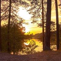 Мухтоловские озера :: Елена Князева