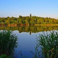 Утро у реки :: Валентина