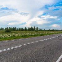 Фото с трассы. :: Виктор Евстратов