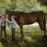 Наша лошадь :: Anna Filipanova