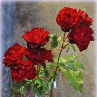 ...сияли розы... :: Антонина Мустонен
