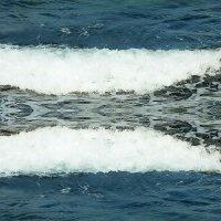 Море :: Русс Род