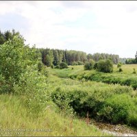 природа Ярославского края,Гаврилов-Ямского района :: Владимир ( Vovan50Nestor )