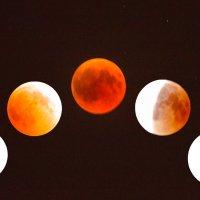 Лунное затмение :: Адик Гольдфарб