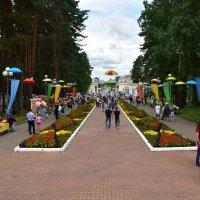 Городской парк - любимое место горожан) :: Владимир Звягин