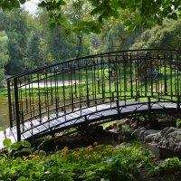 Горбатый мостик :: Яша Баранов