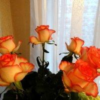 Розы в букете... :: Тамара (st.tamara)