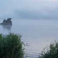 Туман над озером :: Ирина