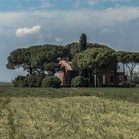 Venezia. Casa sul isola di Torcello. :: Игорь Олегович Кравченко