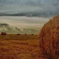 На исходе лета :: Сергей Шаталов
