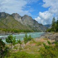На берегу горной реки. :: Валерий Медведев