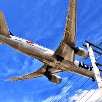 Самолеты 1 :: Viacheslav
