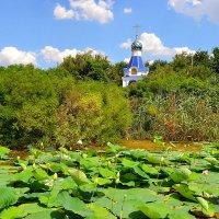 Часовня и долина лотосов :: Валентина