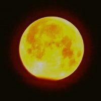 Луна 03:28 по Самарск.времени :: Raduzka (Надежда Веркина)