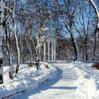 вспоминая зиму 2 :: Александр Прокудин