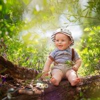 В лесу :: Елена Самсоненко