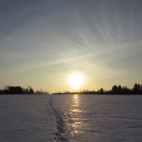 Волшебное утро... :: Крылова Светлана