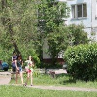 Зелёный Бийск :: Олег Афанасьевич Сергеев