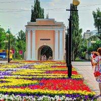Лето продолжается :: Дмитрий Иванцов