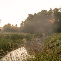 Солнце встаёт над речкой :: Оксана Пучкова