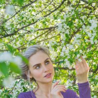 Яблони в цвету :: Анастасия Сапронова