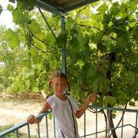 Девочка и виноград.. :: Vladimir Semenchukov