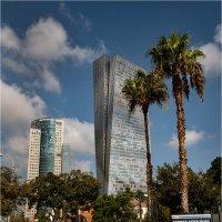 Красивый город! :: Борис Херсонский