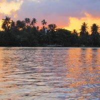 Вечер в Шри-Ланке :: ИРЭН@ .