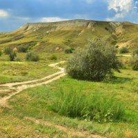 Меловые горы.Природный парк Донской. :: Олег Рыбалко