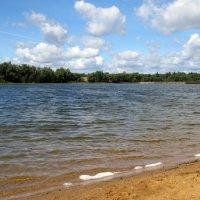 Синьковское водохранилище :: Grey Bishop
