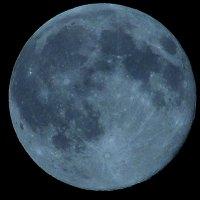 luna :: АЛЕКСЕЙ ФОТО МАСТЕРСКАЯ