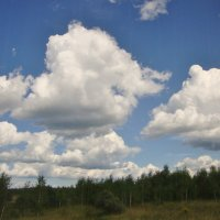 облака идут на юг... :: Галина Флора