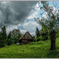 Перед грозой... :: Юрий Гординский