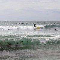Волны для серфинга :: Ольга