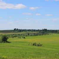 Северные поля :: Ираида Мишурко