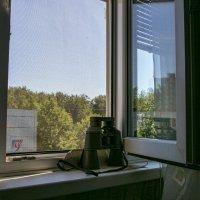 Открытое окно усугубляет жару в комнате. :: Анатолий. Chesnavik.