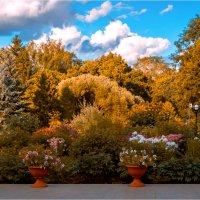 Ботанический сад (Вятка) :: Rigelll80