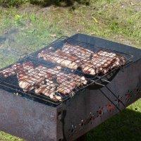 мясо на огне. :: Пётр Беркун