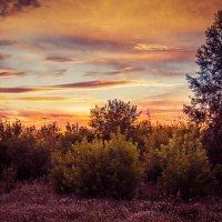Восход солнца из окна :: Вадим Басов