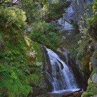 Водопад Чоодор. :: Nina Streapan